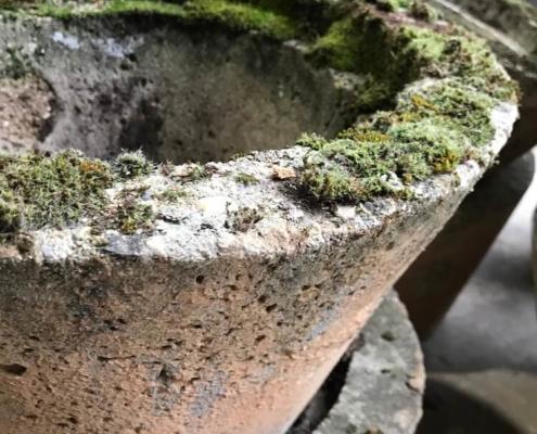 Abilis Export - Sourcing - Garden - 02